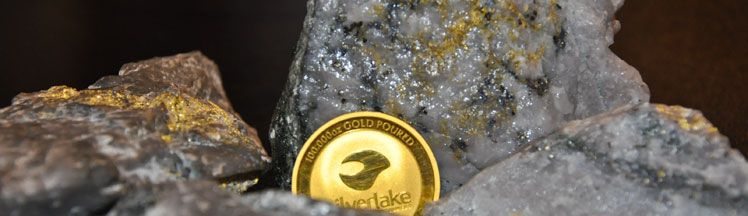 Silver Lake Gold Coin